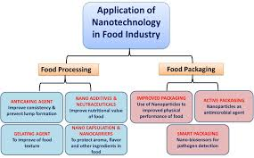 cuisine uip avec table int r frontiers application of nanotechnology in food science
