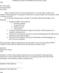 employment letter example efficiencyexperts us
