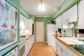 white kitchen cabinets with green countertops 75 beautiful galley kitchen with green countertops pictures