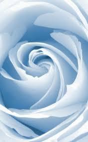 powder blue 71 best powder blue images on pinterest powder baby blue and