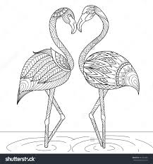 hand drawn flamingo couple zentangle style for coloring book