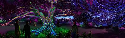 Botanical Garden Atlanta Lights Atlanta Botanical Gardens Light Show 2017 Fasci Garden