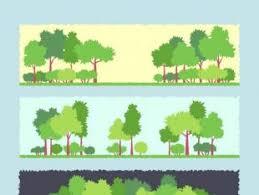 tree banners free vectors ui