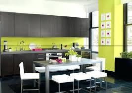 cuisine vert anis tonnant decoration de cuisine vert anis id es design chemin e and