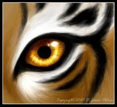 tiger by jessielynn85 on deviantart