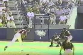 bird experts reflect on randy johnson hitting a bird with a pitch