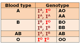 codominance biology notes for igcse 2014