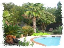 image of pool landscaping ideas in ground pool landscaping ideas