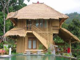 Native House Design 9 Best Dream House Images On Pinterest Tropical Houses Dream