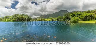 Oahu Botanical Garden by Hoomaluhia Botanical Gardens Stock Images Royalty Free Images