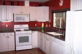 Kitchen Remodel Ideas For Mobile Homes Lovely Replacement Kitchen Cabinets For Mobile Homes 24 On Home