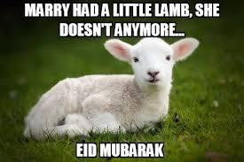 Eid Memes - ahlulbayt news agency abna shia news