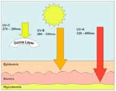 What Is Uv Light What Is Ultraviolet Uv Light Hawaiiantanfastic