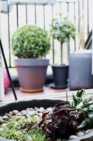 ask the expert 10 tips to transform a tiny balcony into an