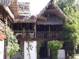 wild orchid home decor best price on wild orchid resort havelock island in andaman and