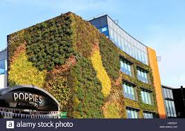 Greenliving by Eco Green Living Wall Office Building In Camden London Stock