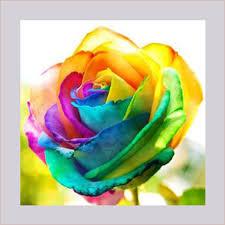 Multi Colored Roses Aliexpress Com Buy Sophie Beauty Home Diy Diamond Painting Cross