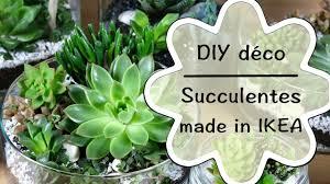 decoration petit jardin diy créer une décoration de succulentes tutoriel facile de