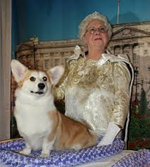 The Queens Corgis Meet The New Akc Breeds At Westminster This Year And More As Bark