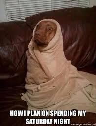 Saturday Night Meme - how i plan on spending my saturday night dog in blanket meme