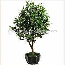 bonsai plant ornamental artificial olive tree buy olive tree