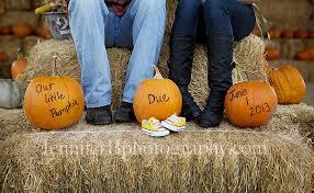 pumpkin patch maternity pumpkin patch baby reveal