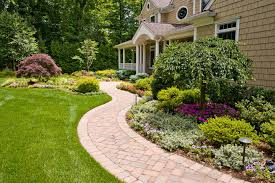garden ideas front yard landscaping ideas with palm trees
