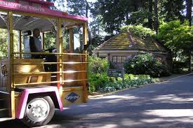 Hop On Hop Off Seattle Map by Hop On Hop Off Pink Trolley Sightseeing Tour One Day Pass