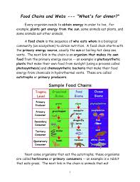 Food Chains Worksheet Food Chains And Webs