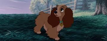 disney breed lady lady u0026 tramp dog