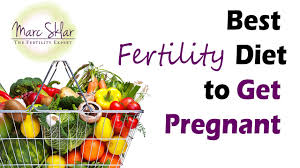 best fertility diet to get pregnant fast youtube