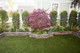 landscaping under maple trees potted plants under maple trees