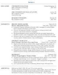 Sample It Professional Resume by Job Cv Examples
