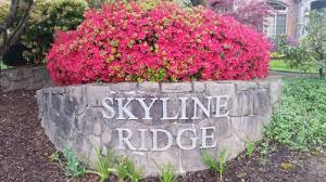 skyline ridge city of west linn oregon official website