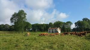 farm in france arable mixed farm for sale