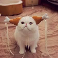 chicken drumstick headband pet dog cat headdress funny hair