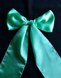 Mint Chair Sashes Chair Covers U0026 Sashes Party Perfect Gympie Gympie Weddings