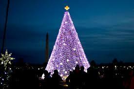 national christmas tree lighting 2016 here s what you can t bring to the national christmas tree lighting