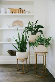 Mid Century Plant Stands Home Decor Pinterest Mid Century - Home decoration plants