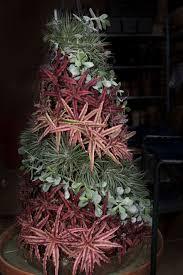 новогодний декор из u2026суккулентов u2013 succulent christmas tree мой