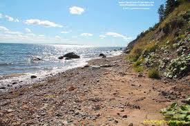 Cape Breton Cottages For Sale by Real Estate For Sale At Cape Breton Island Nova Scotia Canada
