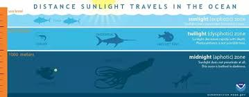 how fast does light travel in water vs air why does light from the sun not reach the depths of the ocean in