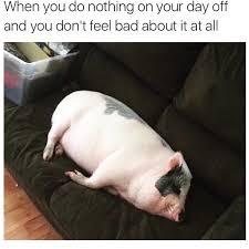 Sunday Meme - happy sunday memebase funny memes