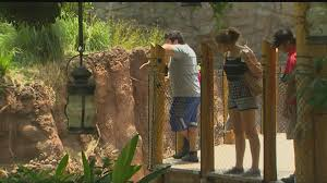 Houston Zoo Lights Prices by Houston Zoo Reviews Policies After Cincinnati Zoo Incident Khou Com