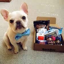 dog toys treats u0026 gifts every month barkbox