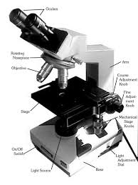 why is a light microscope called a compound microscope introduction
