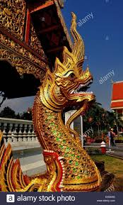 chiang mai thailand gilded dragon with fierce teeth wrapped