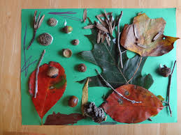 nature walk assemblage art project for kids projects for kids