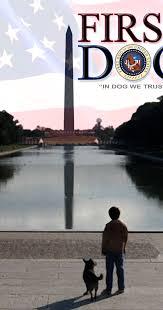 imdb all the dog canine movies films tv series u0026 episodes i