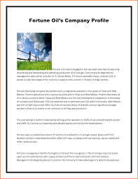 business profile template example mughals